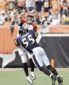Baltimore Ravens Terrell Suggs tackles Cincinnati Bengals quarterback Carson Palmer as he releases the ball during fourth quarter   of Sunday's game. Suggs was called for roughing the passer.