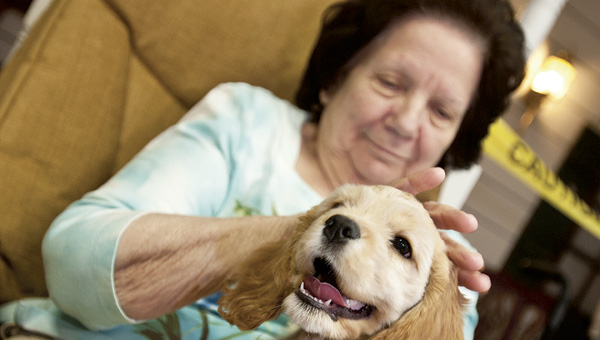 Jo Ann Porter keeps a soft but firm hold of a cocker spaniel puppy as she pets the dog during a pet therapy visit at Morning Pointe Ridge senior living facility Friday.