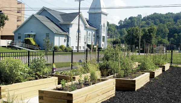 Plots of vegetables grow in the Community Garden planted by residents who otherwise would not be able to have a garden.