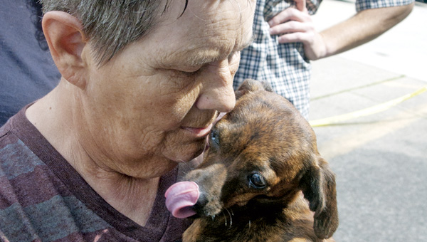 Cyndi Combs of Ironton plays with a mixed-breed dachshund at the pet adoption at the Briggs Lawrence Library on Monday.