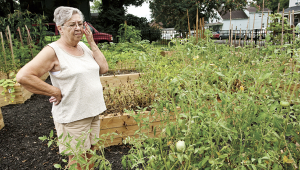 Rosemary Joseph adjusts her glasses as she looks down at nearly empty plots at the Ironton Community Garden late Wednesday morning.