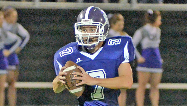 Chesapeake Panthers' quarterback Austin Stone is one of many first-year starters this season. Inexperience will play a key role as the Panthers play the Symmes Valley Vikings on Friday. (Kent Sanborn Of Southern Ohio Sports Photos.com)