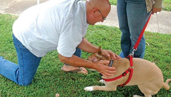 Terry Jones, pastor of Resurrection Hope United Methodist Church, blesses Brady at the second annual pet blessing at the church.