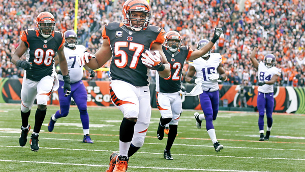 Cincinnati Bengals middle linebacker Vincent Rey (57) returned a 27-yard interception in the second quarter against the Minnesota Vikings at Paul Brown Stadium in Cincinnati on Sunday. The Bengals beat the Vikings, 42-14. (MCT Direct Photo)