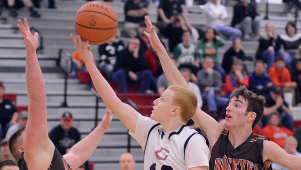 Coal Grove Hornets' guard Sean Paulus (12) drives inside and scores against the Nelsonville-York defense Friday. Paulus had 10 points as the Hornets won 52-47 in overtime to win the sectional title. (Kent Sanborn of Southern Ohio Sports Photos)