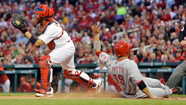 Cincinnati Reds' first baseman Joey Votto (19) scores a run in the fifth inning. The Reds took the early lead but couldn't hold on as St. Louis rallied to win 7-5. (Photo Courtesy of The Cincinnati Reds)