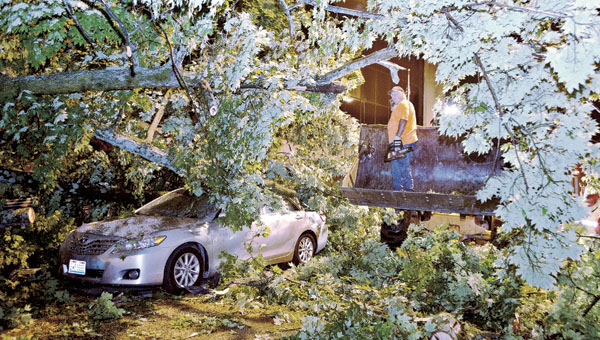 THE TRIBUNE/JESSICA ST JAMES Members of the City of Ironton street crew clear off a gigantic tree on Fifth Street in between the county jail and Lawrence County Courthouse following a storm Tuesday evening. One of the two vehicles hit by the tree was a Hanging Rock Police truck.