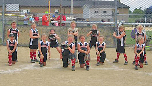 The Coal Grove Lady Hornets 7-8-year-old All-Stars captured the District 11 girls' softball championship and qualified for the state tournament. The Lady Hornets finished ranked among the top 10 teams in the state in their impressive tournament run. Team members are: top row form left to right, Autum Hicks, Rylee Black, Madison Vanover, Abby Collins, Jordyn Dale, Alivia Riley and Josie Kidd; bottom row from left to right, Emma Harper, Alexus Wood, Jenna Hicks, Marlee Malone, Laura Hamm and Kinsy Keeney. Not pictured was Lilly Camp. The team's success was guided by coaches Brian Kidd, Scott Hamm and Josh Harper and assisted by team mom Katie Hamm. (Photo submitted)