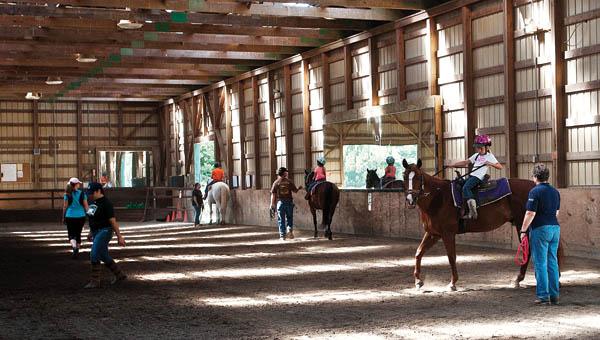 horse camp 3 DSC_6521