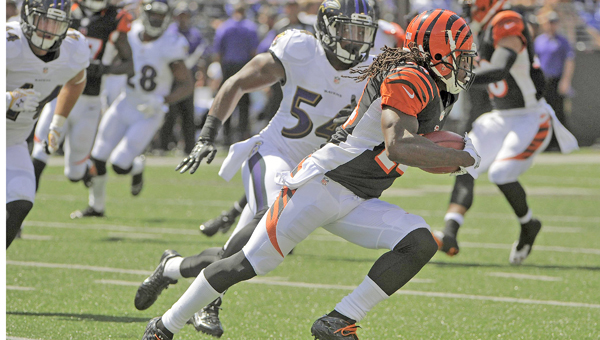 Cincinnati Bengals' Adam Jones runs a return for 45 yards past Baltimore Ravens' Zach Orr (54) during the first quarter on Sunday at M&T Bank Stadium in Baltimore. The Bengals beat the Ravens 23-16. (MCT DIrect Photo)