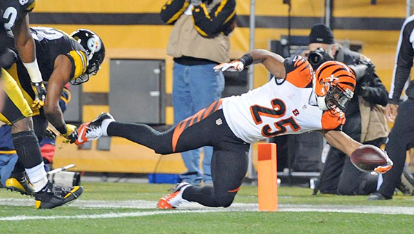 Cincinnati Bengals' running back Giovani Bernard (25) dives into the into end zone to score a first quarter touchdown on a 17-yard pass play. The Bengals lost to the Pittsburgh Steelers 27-17 on Sunday and lost the division title. (Courtesy of the Cincinnati Bengals.com)