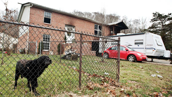A dog watches inside the gated yard of what used to be his home, located of Hillview Lane, following a fire on Tuesday.