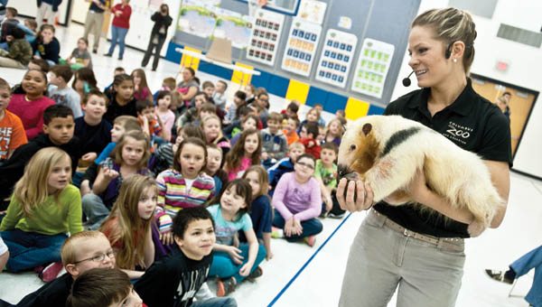 April Tausch, animal program specialist, gives Burlington Elementary School students a close look at a tamandua during a special presentation Friday by the Columbus Zoo.