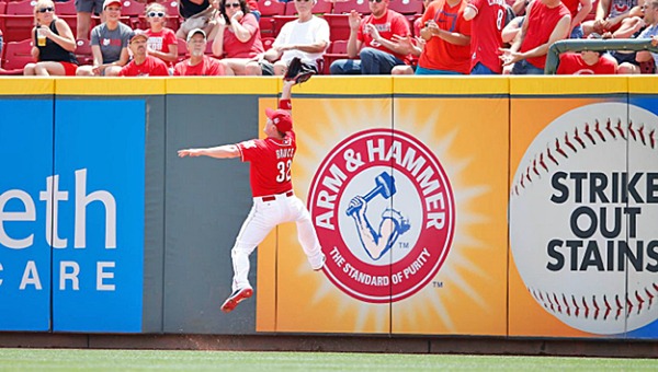 Cincinnati rightfielder Jay Bruce makes a leaping catch against the wall during the second inning of Wednesday's game against the Colorado Rockies. The Reds lost to the Rockies 6-4. (Photo Courtesy of The Cincinnati Reds)