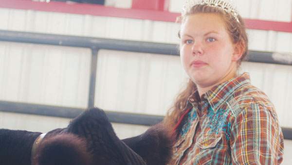 Kaylee Cade with her grand champion market steer during the large animal auction Saturday at the Lawrence County Fair.