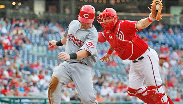 Cincinnati's Tucker Barnhart scores a run in the eighth inning as he avoids the tag by Washington Nationals' catcher Wilson Ramos. Barnhart singled earlier in the 8th inning for the Reds first hit against Max Scherzer. Cincinnati lost 5-1. (Photo Courtesy of The Cincinnati Reds.com)