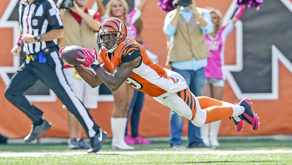 Cincinnati Bengals wide receiver Brandon Tate (19) stretches out for a 55-yard touchdown pass during the third quarter on Sunday, at Paul Brown Stadium in Cincinnati. The Bengals won 36-21. (MCT Direct Photos.com)