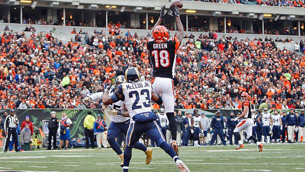 Cincinnati Bengals' wide receiver A.J. Green makes a leaping catch in the end zone for a touchdown during Sunday's 31-7 win over the St. Louis Rams. (Photo Courtesy of The Cincinnati Bengals.com)