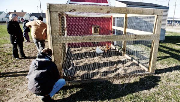 The back view of the Open Door School chicken coop.