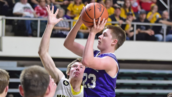 Chesapeake Panthers' senior guard Gage Rhoades was named to the Associated Press Division III basketball first team to lead six area players who were honored. (Kent Sanborn of Southern Ohio Sports Photos.com)