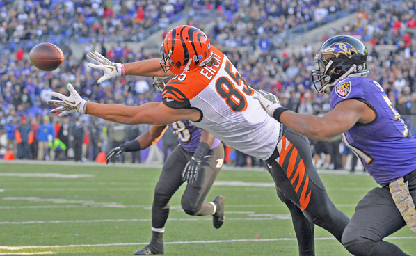 Cincinnati Bengals' tight end Tyler Eifert (85) reaches to make a diving catch against the Baltimore Ravens. Eifert was injured last year and will not be available for the team's minicamp. (MCT Direct Photos)